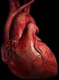 Компенсаторная гиперфункция сердца