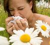 Поговорим об аллергии