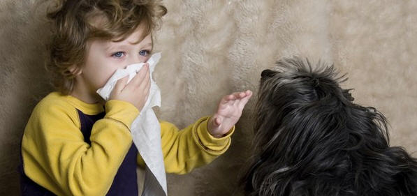 Как вылечить аллергию и изменить реакцию организма народными методами