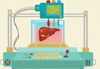 На печать. Искусственные органы создаются нажатием одной кнопки