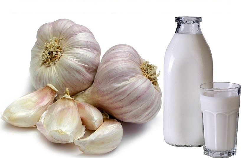 Молоко с чесноком от глистов – верное средство или опасное заблуждение